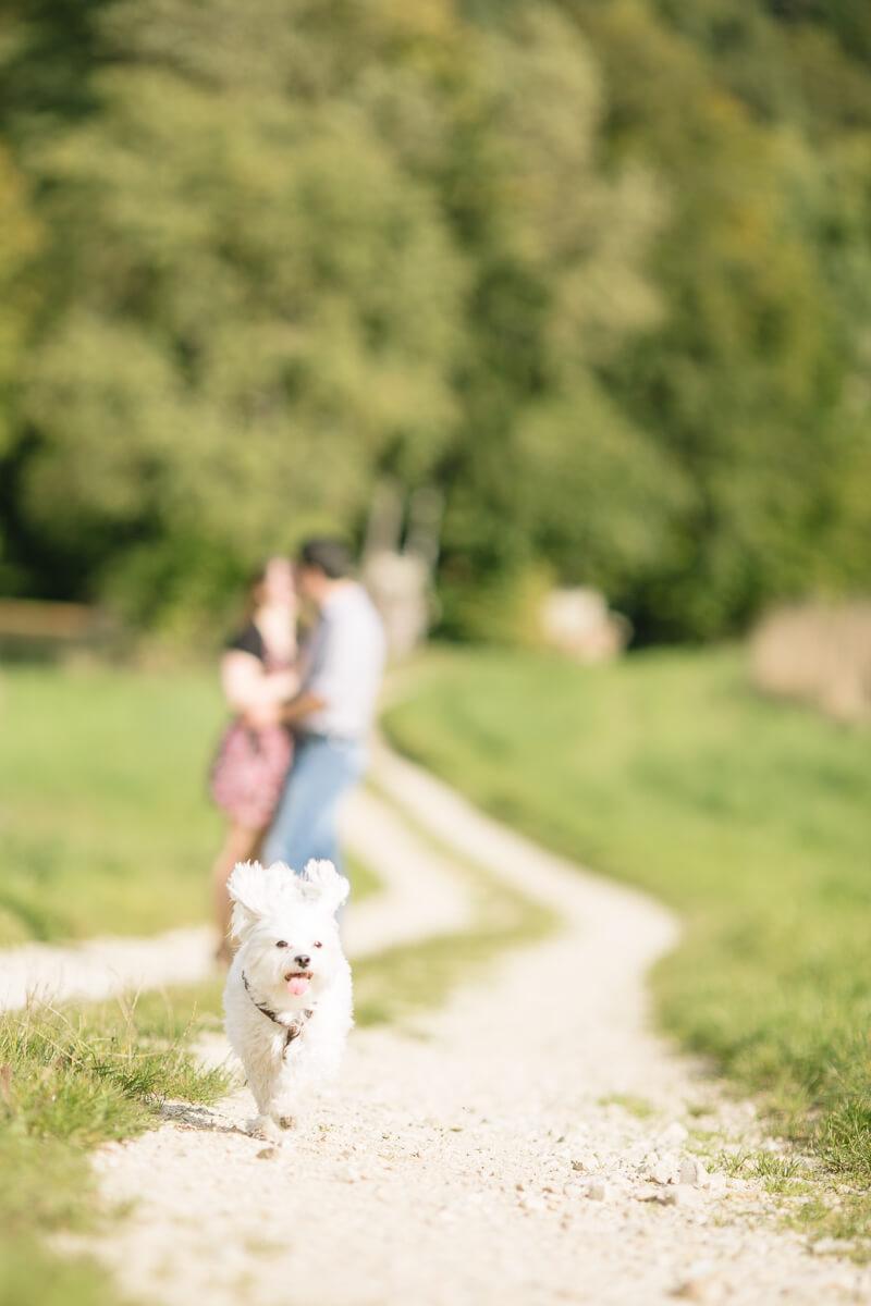 Hochzeitsfotograf Franken Engagement Micha Andi 014 - hochzeitsfotografie, blog, bestof - Verlobungsshooting, Hochzeitsfotograf Nürnberg, Hochzeitsfotograf Franken, Fränkische Schweiz, Engagement
