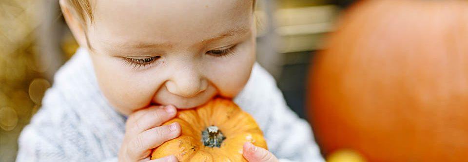 {family} HERBSTLICHE MINISESSION mit einem kleinen Herzensbrecher – Babyfotograf Franken