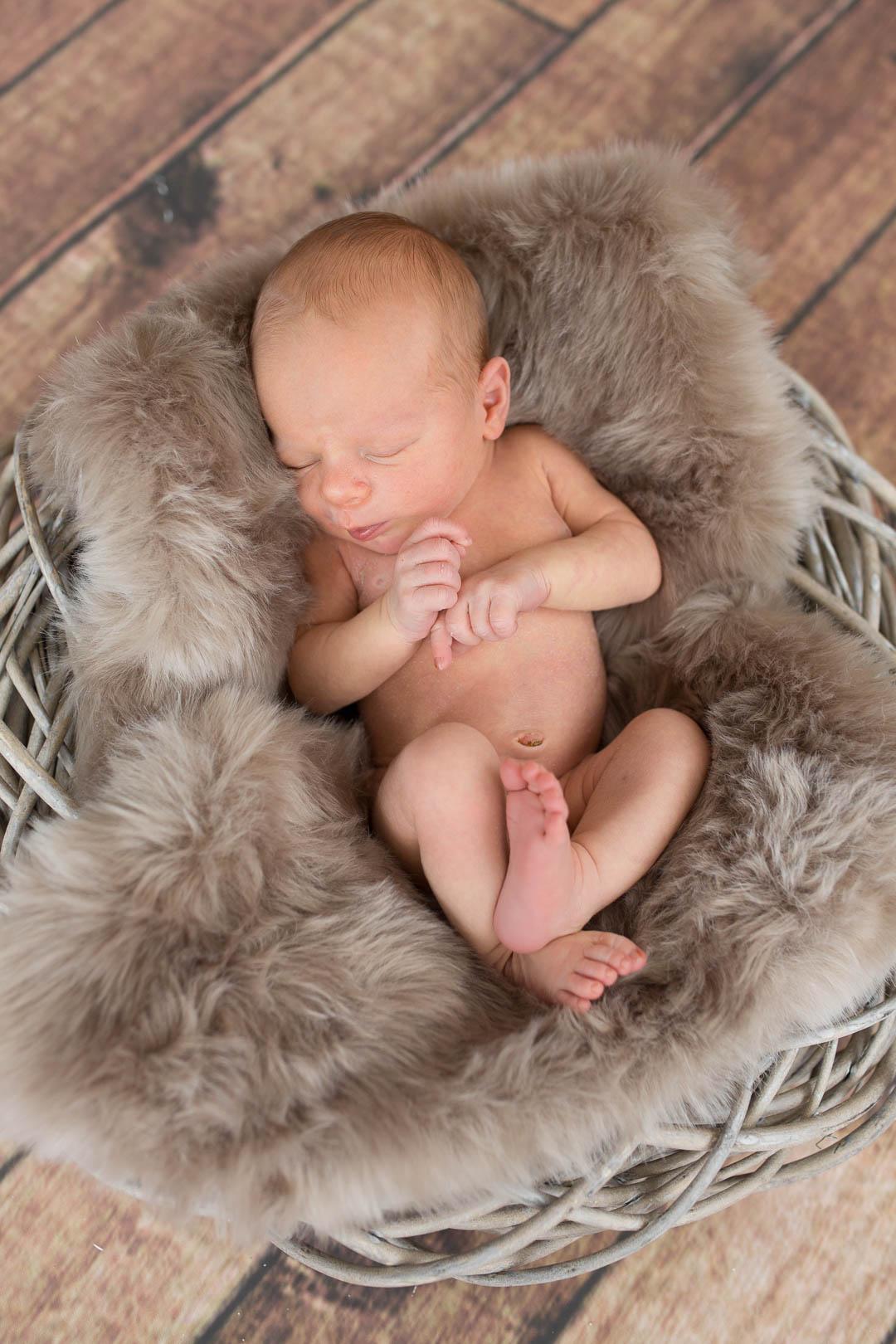 Babyfotograf Franken Nürnberg Bayreuth Pegnitz 008 - babyfotografie, blog - Neugeborenenfotografie, Neugeborene, Babyfotografie, Babyfotograf Nürnberg, Baby